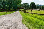 Road in landscape