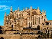 spain, mallorca, palma. the cathedral