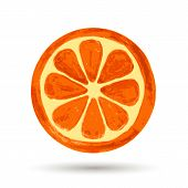 Watercolor Painting, Orange On White Background. Vector Illustration