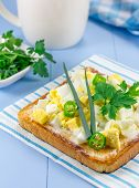 pic of green onion  - Breackfast sandwich with eggs parsly green onion and green chili pepper - JPG