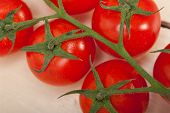 picture of cluster  - fresh cherry tomatoes on a cluster over rustic wood table - JPG
