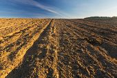 foto of plow  - Beautiful plowed field autumnal landscape photographed in nice morning light under blue sky - JPG