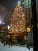 Christmas Tree Rockefeller Plaza