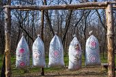 stock photo of archery  - Archery on target in the woods in early spring - JPG