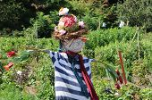 stock photo of scarecrow  - Scarecrow in the Botanical Garden of Montreal - JPG