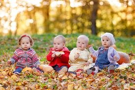 pic of four  - Four cheerful little baby sitting on yellow autumn leaves - JPG