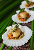 stock photo of scallop shell  - Seared scallops  served on a bed of vegetables, presented on a shell. ** Note: Shallow depth of field - JPG