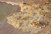 stock photo of polluted  - Polluted river water with dirty foam  - JPG
