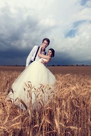 stock photo of married  - Beautiful young bride and groom in wheat field - JPG