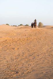 image of sahara desert  - A couple of tourist ride camel into Sahara desert as Desert Tour on March 18 2014 in Merzouga city Morocco - JPG