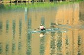 Oarsman Rowing Racing Shell
