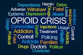 Opioid Crisis Word Cloud on Blue Background poster
