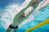 Underwater Photo of Athletic Male Swimmer in Pool