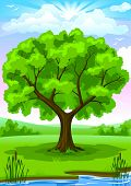 Summer landscape of green river coast with old oak tree and blue sunny sky vector illustration