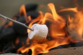 stock photo of fellowship  - marshmallow on a stick being roasted over a camping fire - JPG