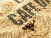 Coffee Seeds On Sackcloth With Printed Word