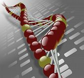 stock photo of dna fingerprinting  - A simple DNA strand with a DNA fingerprint in the background - JPG