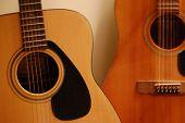 guitars acoustic shadows song