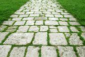 Stone walkway on a grassy field