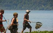 ANAK KRAKATAU, INDONESIA - 8 AUGUST: Researchers look for butterflies to study the patterns of insec