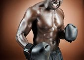 Strong, well built boxer poses with gloves in studio