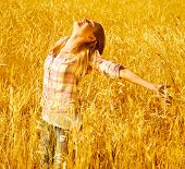 image of fall-wheat  - Image of pretty young woman enjoying autumn rural nature - JPG