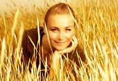 stock photo of fall-wheat  - Image of pretty cute woman on wheat field - JPG