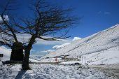 Snowy Mountain Drive In Crisp Cool Air
