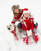 Winter fun , snow, sledding with dog at winter time
