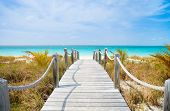 stock photo of dock  - Beautiful beach at Caribbean Providenciales island in Turks and Caicos - JPG