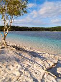 pic of mckenzie  - Beautiful beach and crystal clear fresh water at Lake McKenzie on Fraser Island Australia - JPG