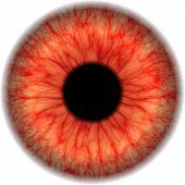Mapa de olho