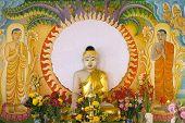 Enlightened Buddha Sitting Under The Bodhi Tree