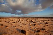 stock photo of sahara desert  - Western Sahara desert - JPG
