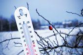 Temperature In Winter
