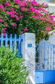 Traditional House And Floral Wall Of Bougainvillea In Fira The Capital Of Santorini, Greece