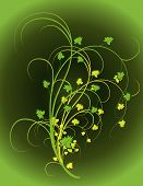 The Background Of Green Leaves