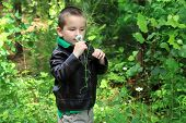 foto of crew cut  - Adorable young child standing in woods - JPG