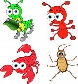 Insectos lindo conjunto