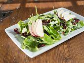 Fresh gourmet raw spinach salad