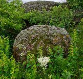 Granite Stones And Grass