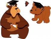 Bear Facts Of Graduating..illustration