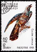 Postage Stamp Malagasy 1991 Common Cuckoo, Bird
