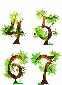 summer's organic alphabet