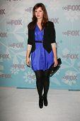 Amber Tamblyn  at the 2011 FOX Winter All-Star Party, Villa Sorriso, Pasadena, CA. 01-11-11
