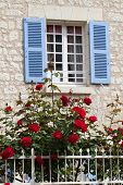 The romantic window with red roses and blue shutters