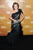 Julianne Hough at the 44th Annual CMA Awards, Bridgestone Arena, Nashville, TN.  11-10-10