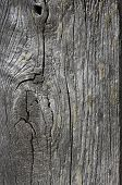 Texture Of Old Wood