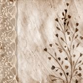 The Paper Vintage Background With a Lace.