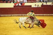 LISBON - JUNE 19: Jose Garrido bullfighter performs at a portuguese style bullfighting show in campo
